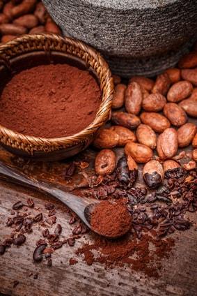 カカオ豆 ココア